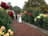 Bride and Groom Visiting Elizabeth Park Dahlia Garden